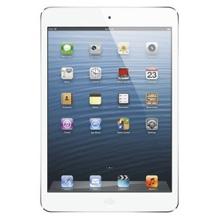 iPad mini for Solavei